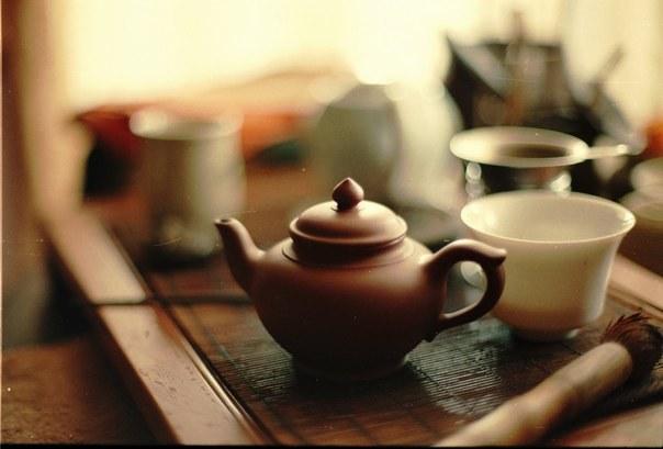чай пуэр какой лучше выбрать