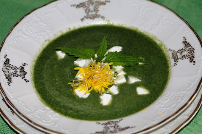 soup with nettle