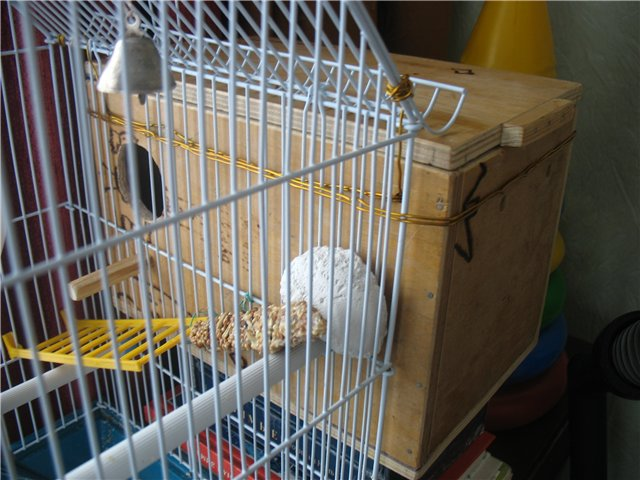 Как сделать гнездо для волнистых попугаев