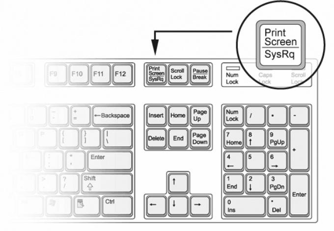 Как сделать снимок экрана компьютера без программ
