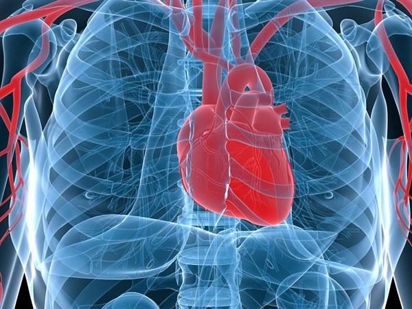 Что делать, если болит сердце