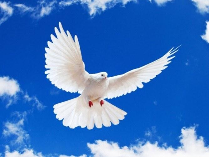 """Что такое """"святой дух"""""""