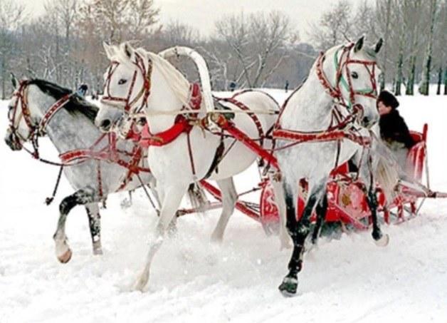 Где отметить Новый год в России