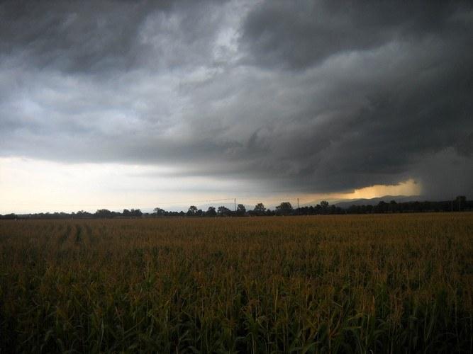 Почему перед сильным дождем  дует сильный ветер