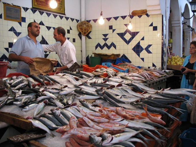 Kak vybrat' rybu