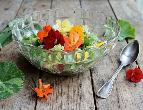 Готовим английский салат в стиле XVII века