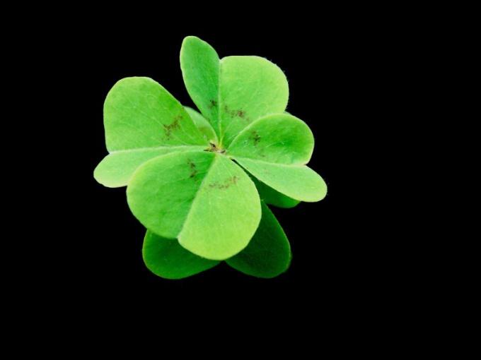 Что такое удача