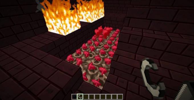 Для чего нужна адская бородавка в minecraft