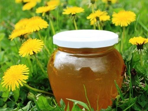 Как просто сделать мед из одуванчиков