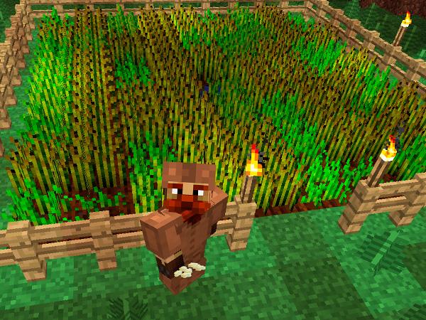 Выращивать в Майнкрафт
