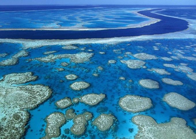 Что такое Большой Барьерный риф