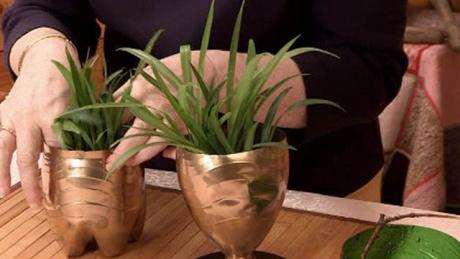 Изготовить горшок для рассады и комнатных цветов своими руками