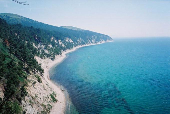 What is better: Black or Mediterranean