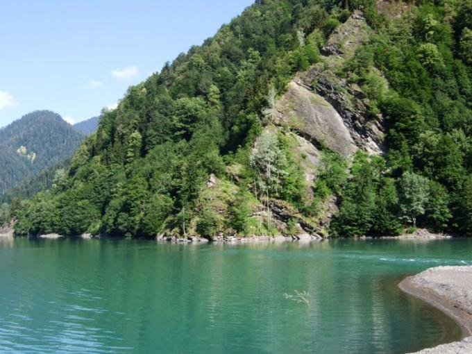 Отдых в Пицунде, плюсы, минусы | Отдых в Абхазии