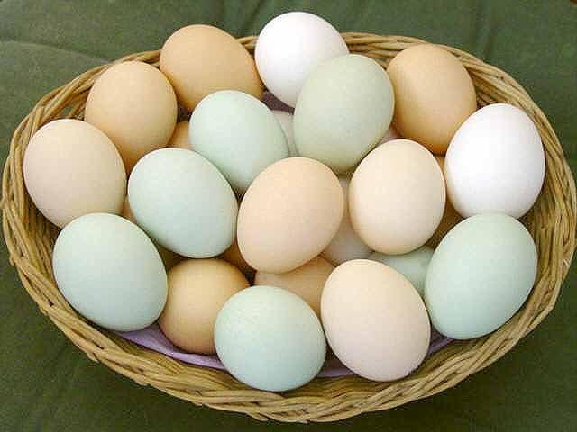 Какова калорийность яиц