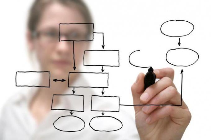 Что такое теория организаций