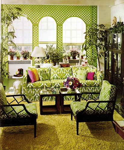 Стороны света и комнатные растения