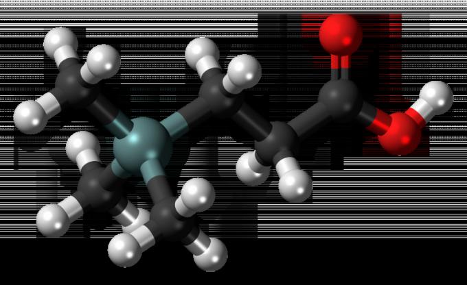 Как получить пропионовую кислоту