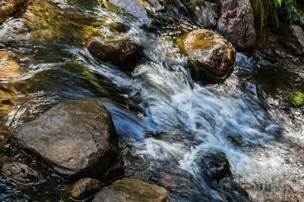 Живая вода может быть жесткой