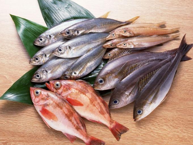Как проверить рыбу на свежесть в магазине