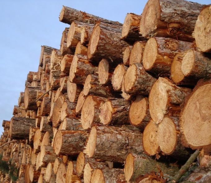 Потенциальная энергия в дровах