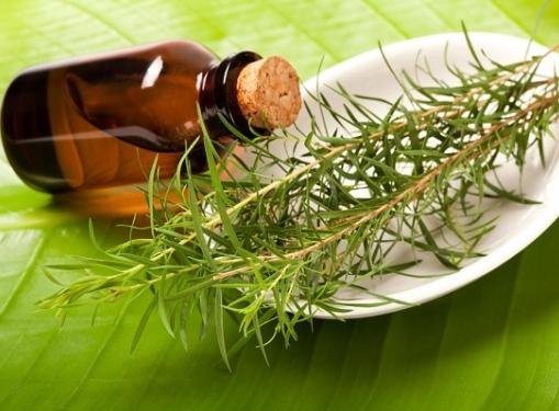Маски для лица с маслом чайного дерева
