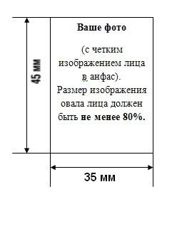 Размеры фотографий при замене паспорта