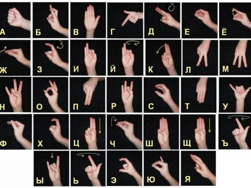 How to learn to speak in sign language