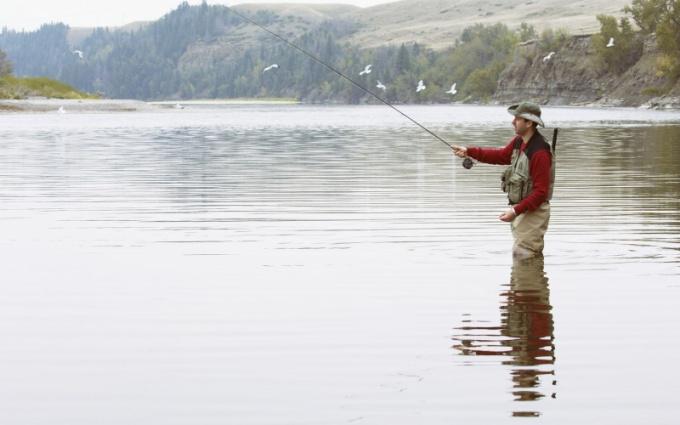 Советы рыболову: как научиться понимать водоем?
