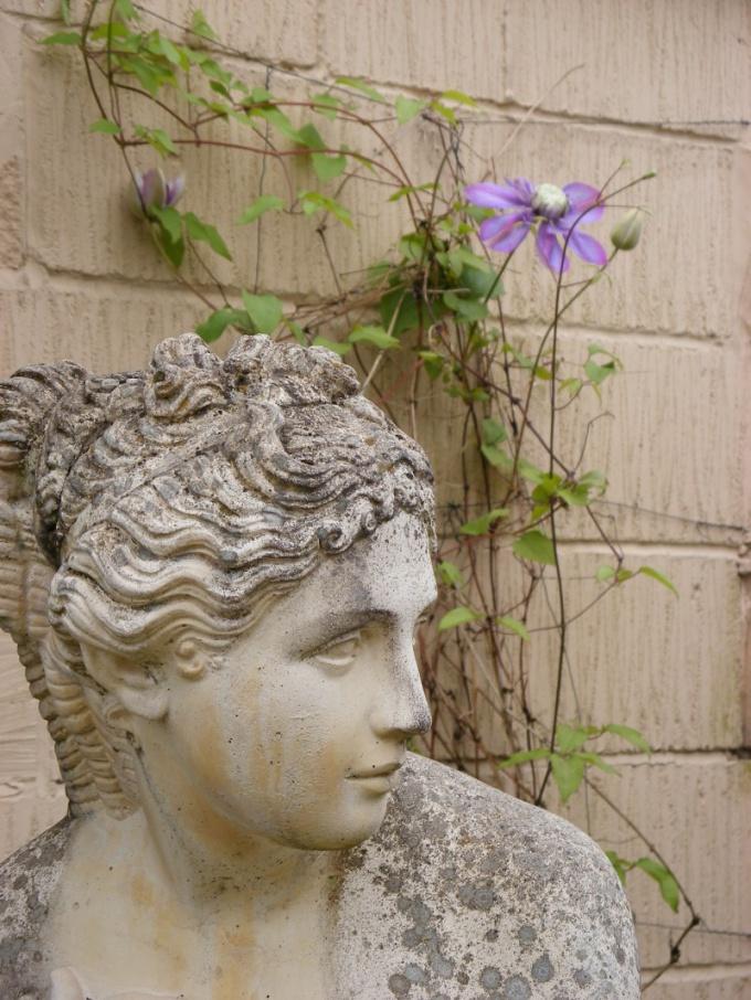 Римские носы присущи европейской расе