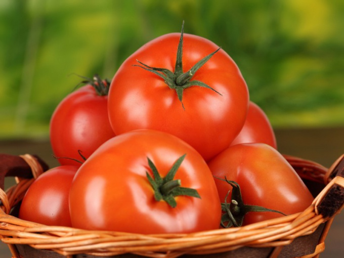 Care of tomatoes: what have to do