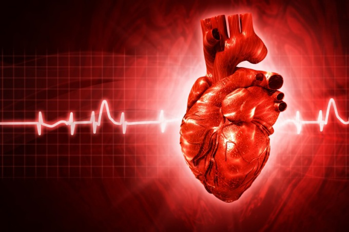 How to conduct daily monitoring of the heart