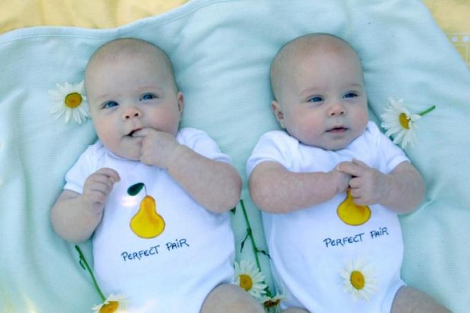 Чем близнецы отличаются от двойняшек