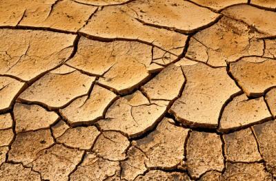 Как облагородить глинистую почву