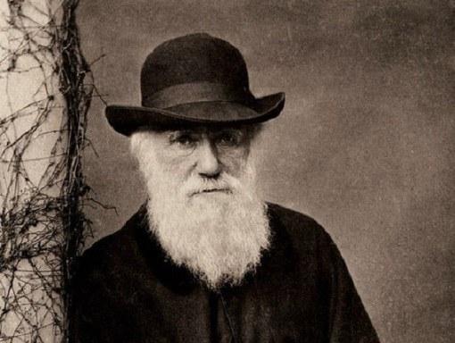 Естественный отбор по Дарвину