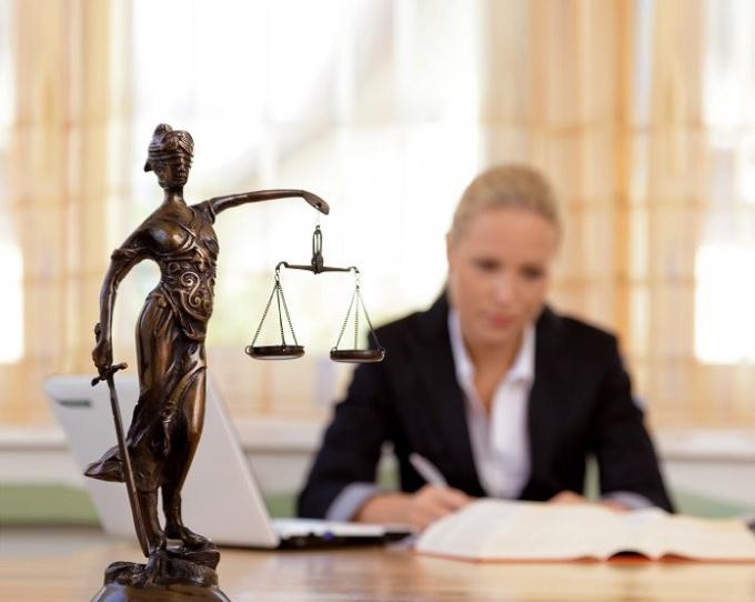 Виды юридической деятельности