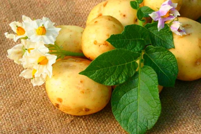 Как быстро похудеть с помощью диеты на картофеле