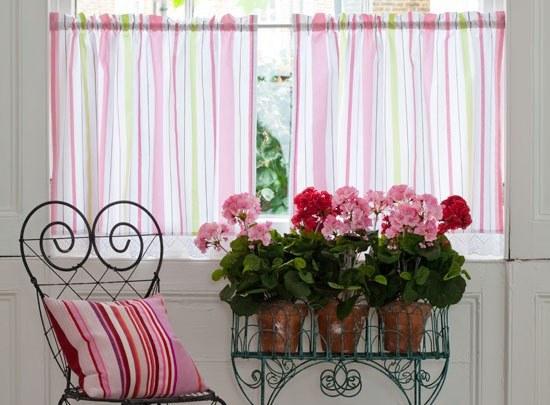 Правильно подобранные комнатные цветы
