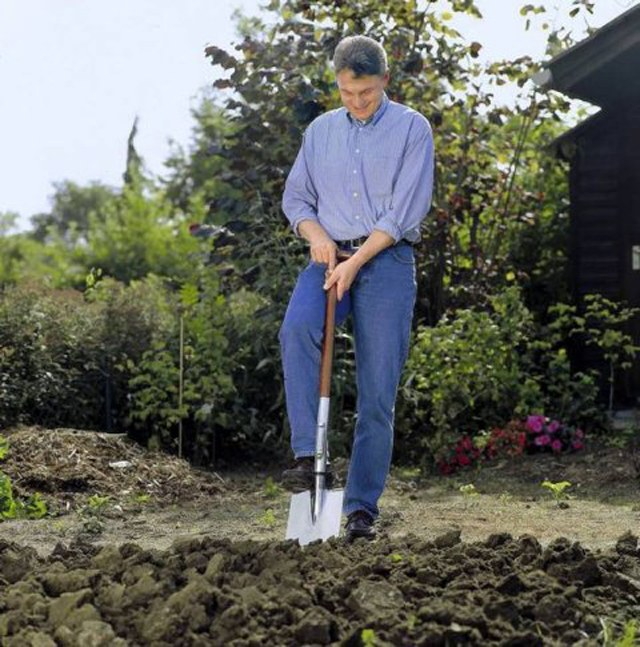 How to dig a patch