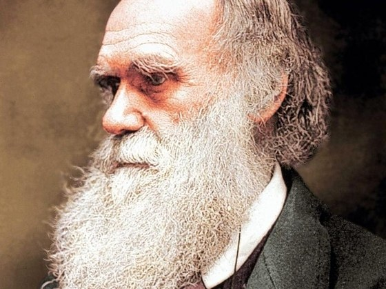 The Discoveries Of Charles Darwin