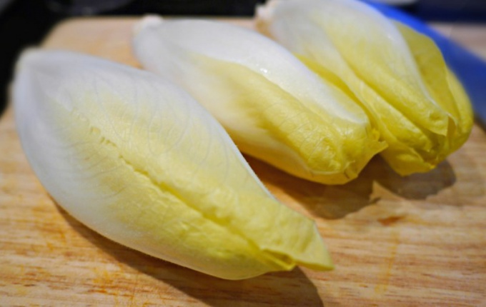 Блюда с цикорием