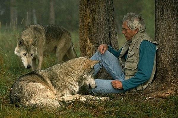 Чем человек отличается от животного