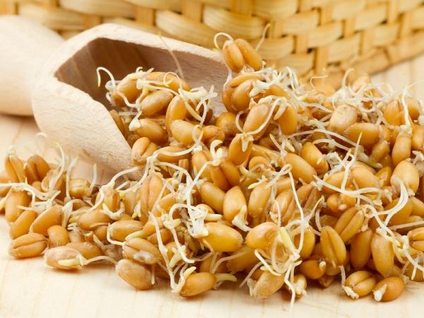 Блюда с пророщенной пшеницей: что приготовить на обед