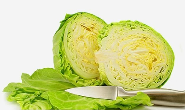 Does the cabbage soup diet