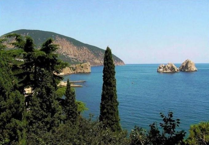 Крым или Краснодар - где отдохнуть