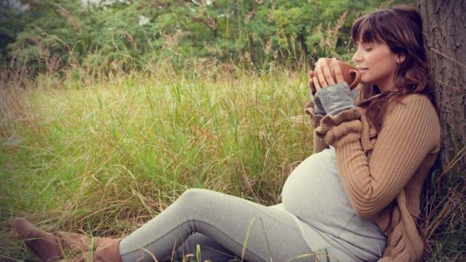 Зачем беременной пить почечный чай