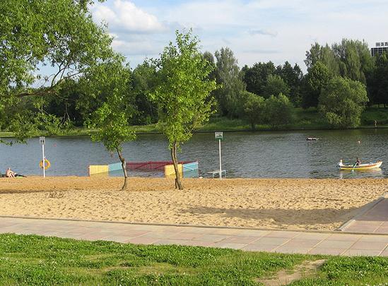 Beaches Suburbs