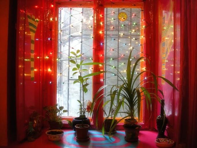 Окна можно настолько эффективно утеплить, что зимой будет комфортно и растениям
