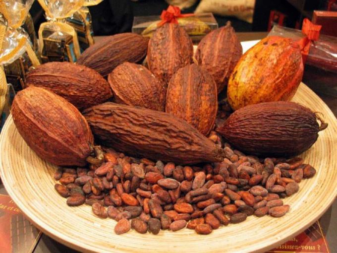 Какао-масло получают из какао-бобов