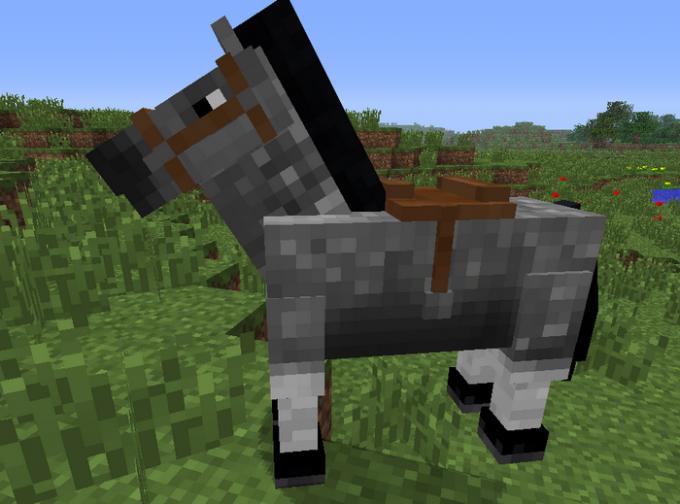 Где можно найти лошадей в майнкрафт
